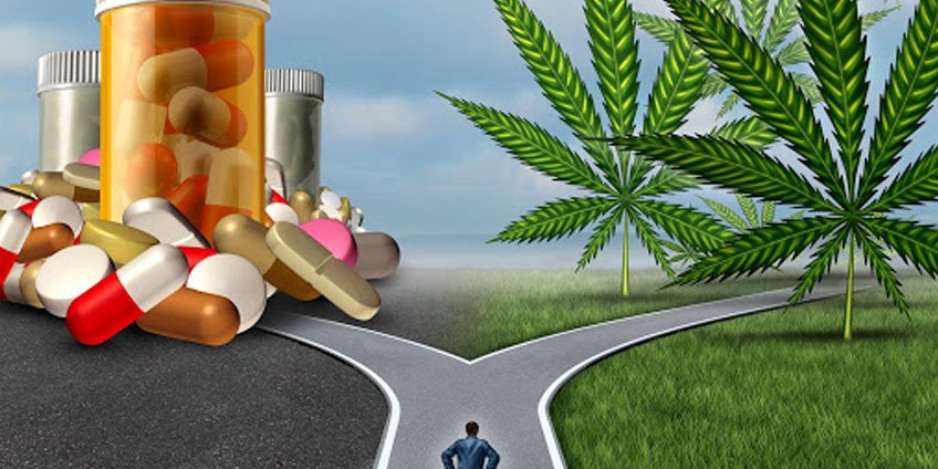 10 Reasons to Consider Cannabis Therapy